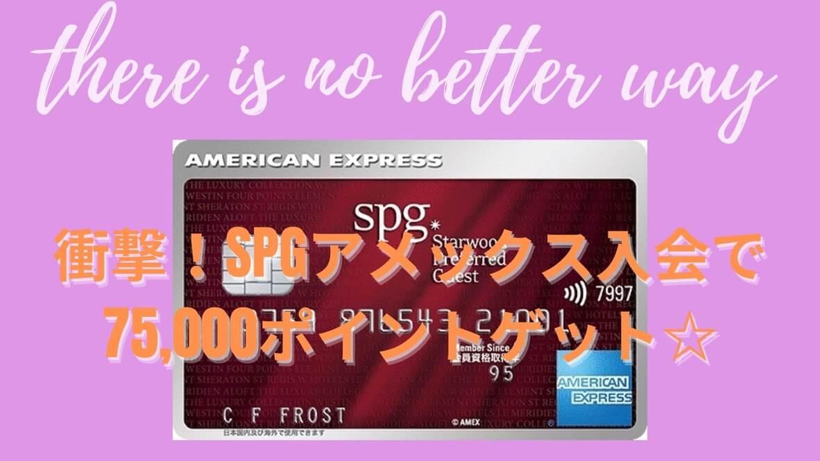 spgamex 紹介 SPGアメックス 紹介 75,000ポイント 85,000ポイント